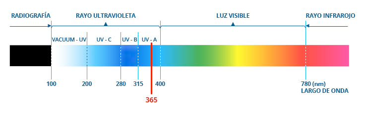 Espectro de luz insectos